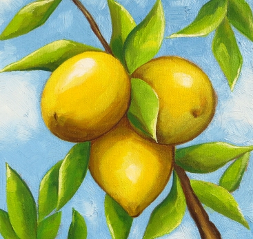 Three Lemons, Oil on Canvas, 20x20 cm