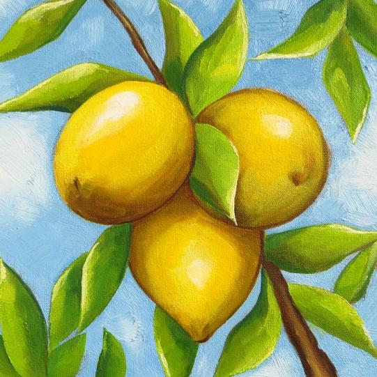 Three Lemons, Oil on Canvas, 20x20 cm