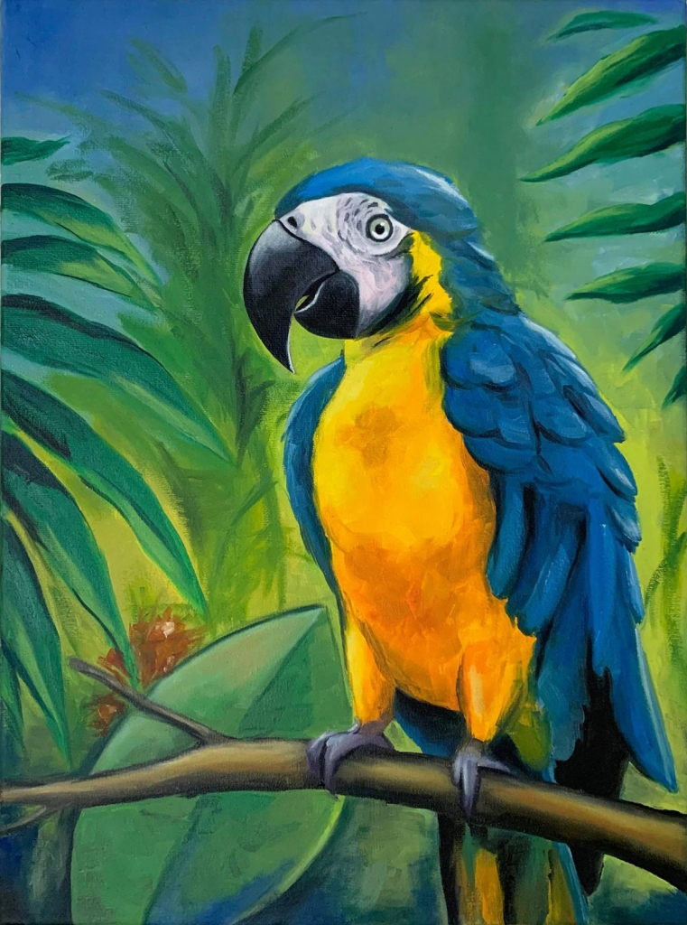 Blue and Yellow Macaw, Oil on Canvas 40x30 cm
